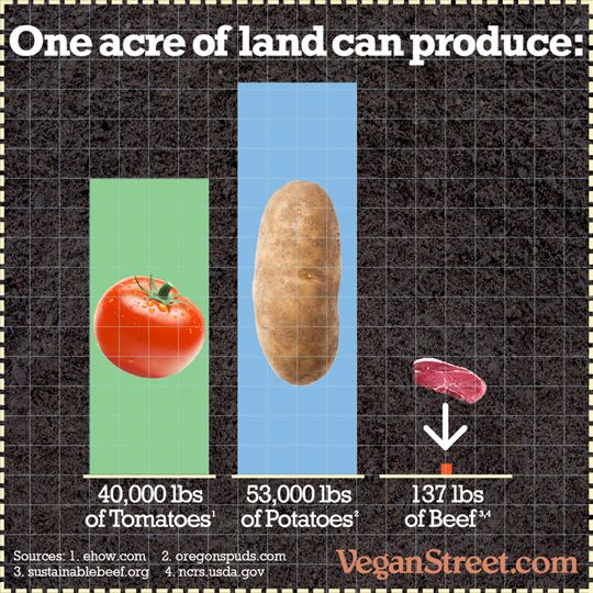 One Acre of Land can produce