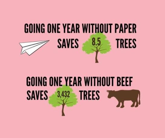 Stat Vegan Trees