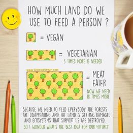 Vegan Land Use